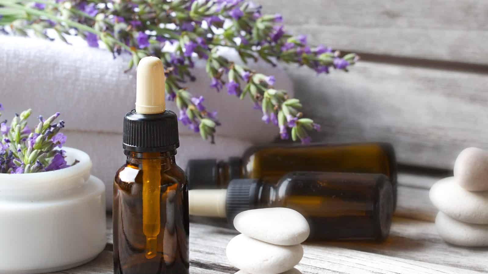Can Lavender Oil Help You Sleep