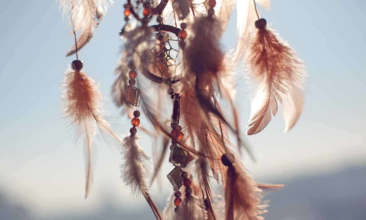 The True Dream Catcher Meaning