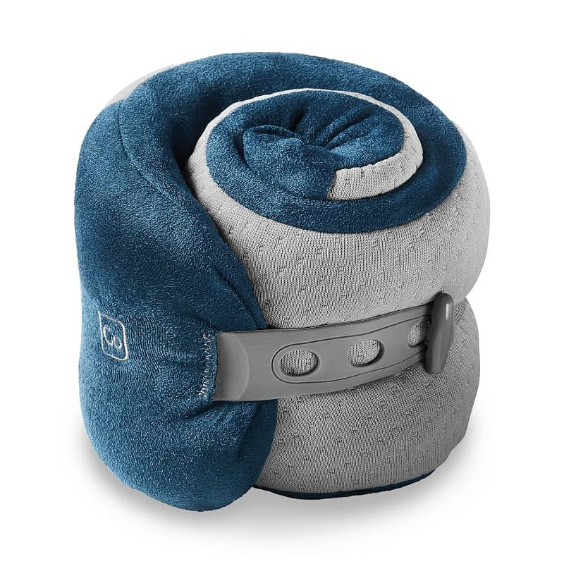 riggs & Riley Foldable Pillow