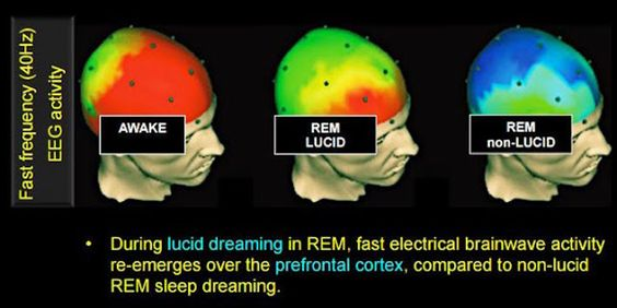 What Happens When We Experience Lucid Dreaming