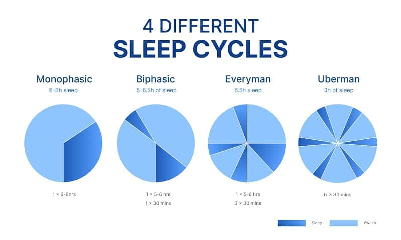 4 different sleep cycles