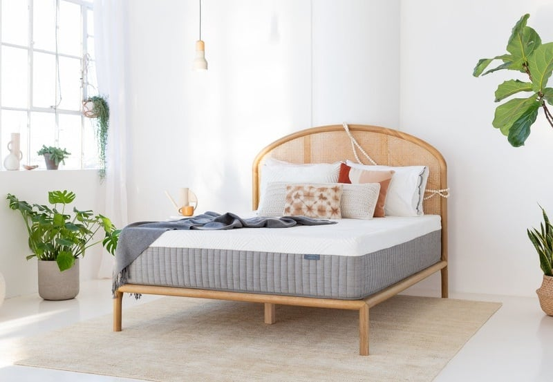 Best Organic, Eco Friendly, and Natural Mattresses cypress