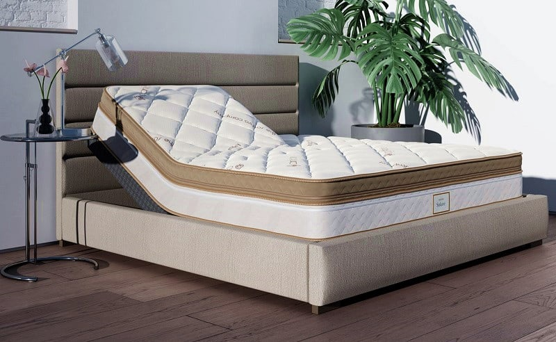 Best Adjustable Bed for Back Pain, Terry Cralle, RN, MS, CPHQ, solaire